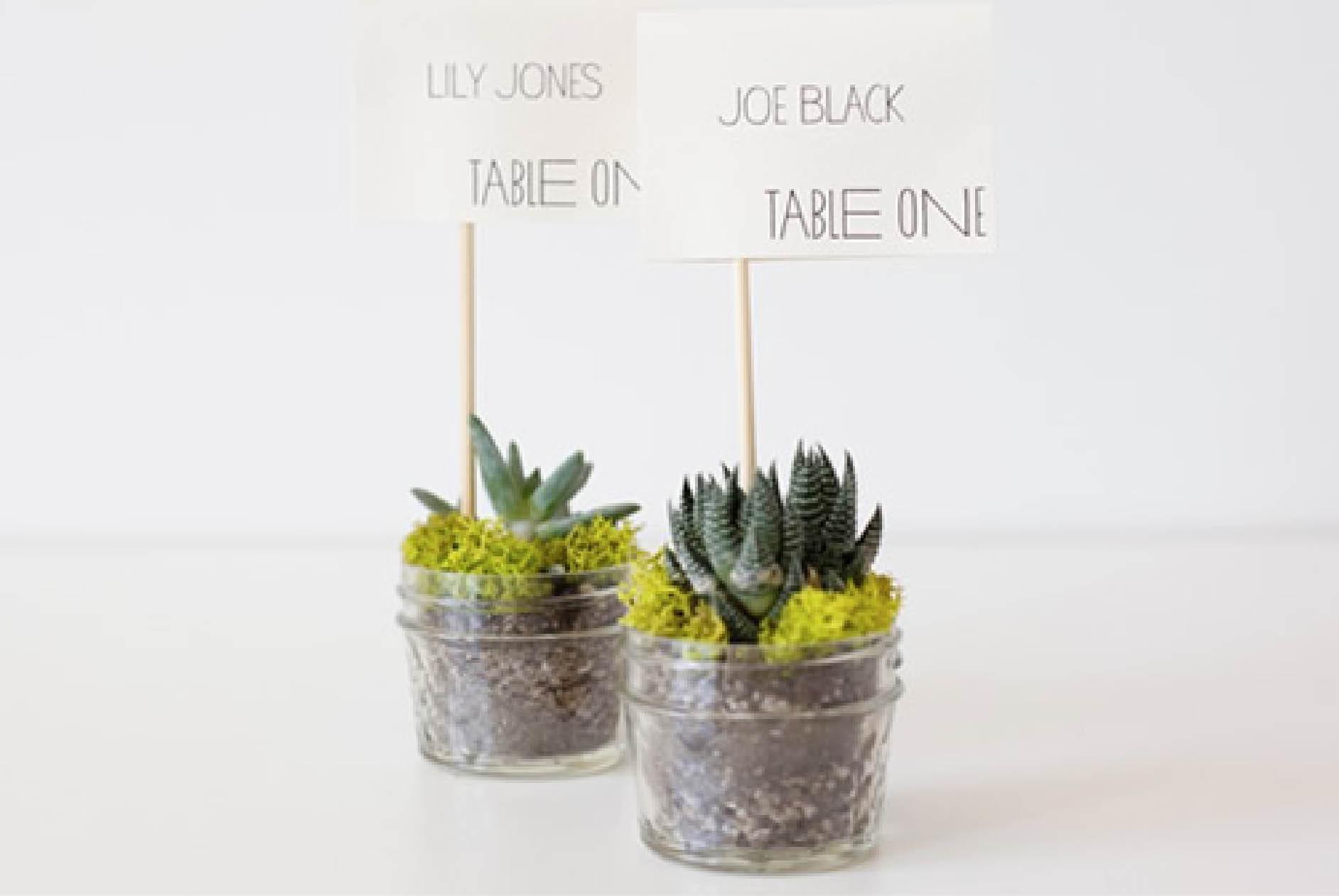 Paper & Lace » Josie
